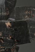 Dark Thrasher (detail), 2018