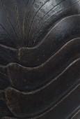 Bicho [detail], 2011, 2013